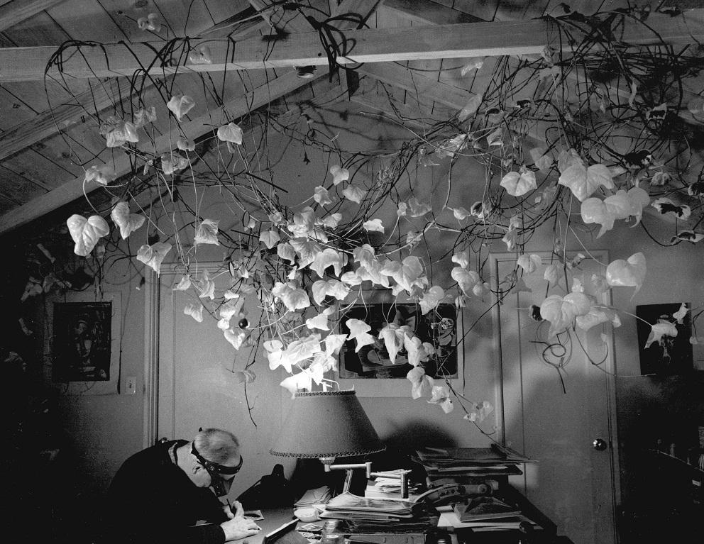 Wynn Spotting in the Studio © Phil Palmer