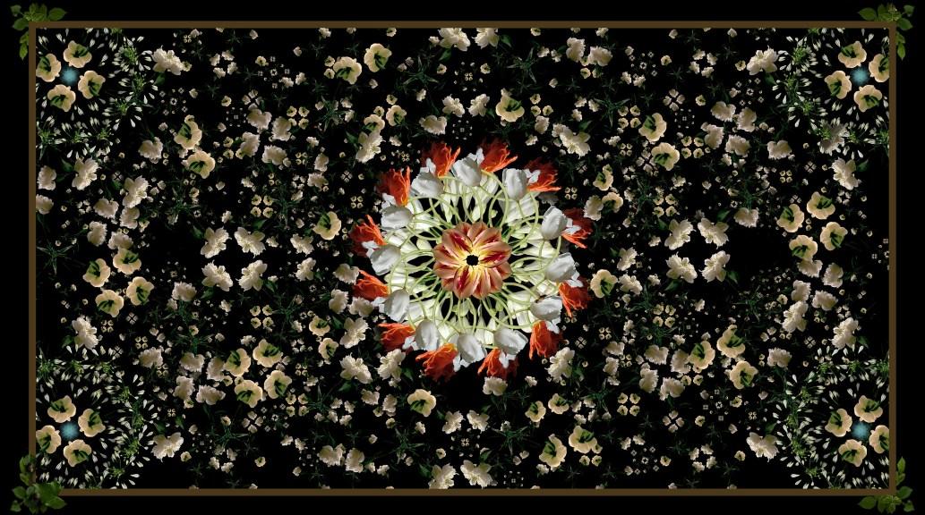 Floriculture 1 ©Lisa Creagh