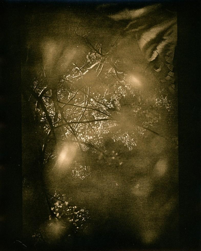 Conception © Amy Kanka Valadarsky