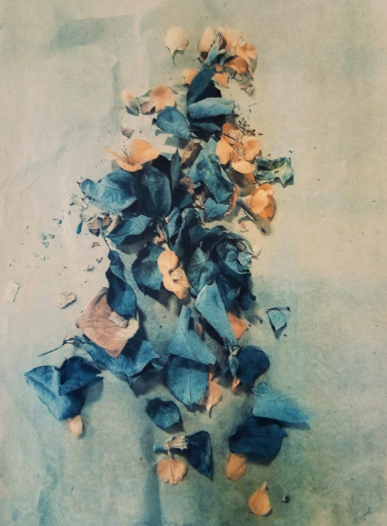 Pieces of March © Diana Bloomfield