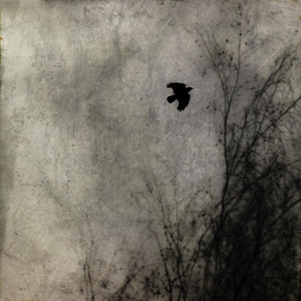 Final Approach © Jim Messer