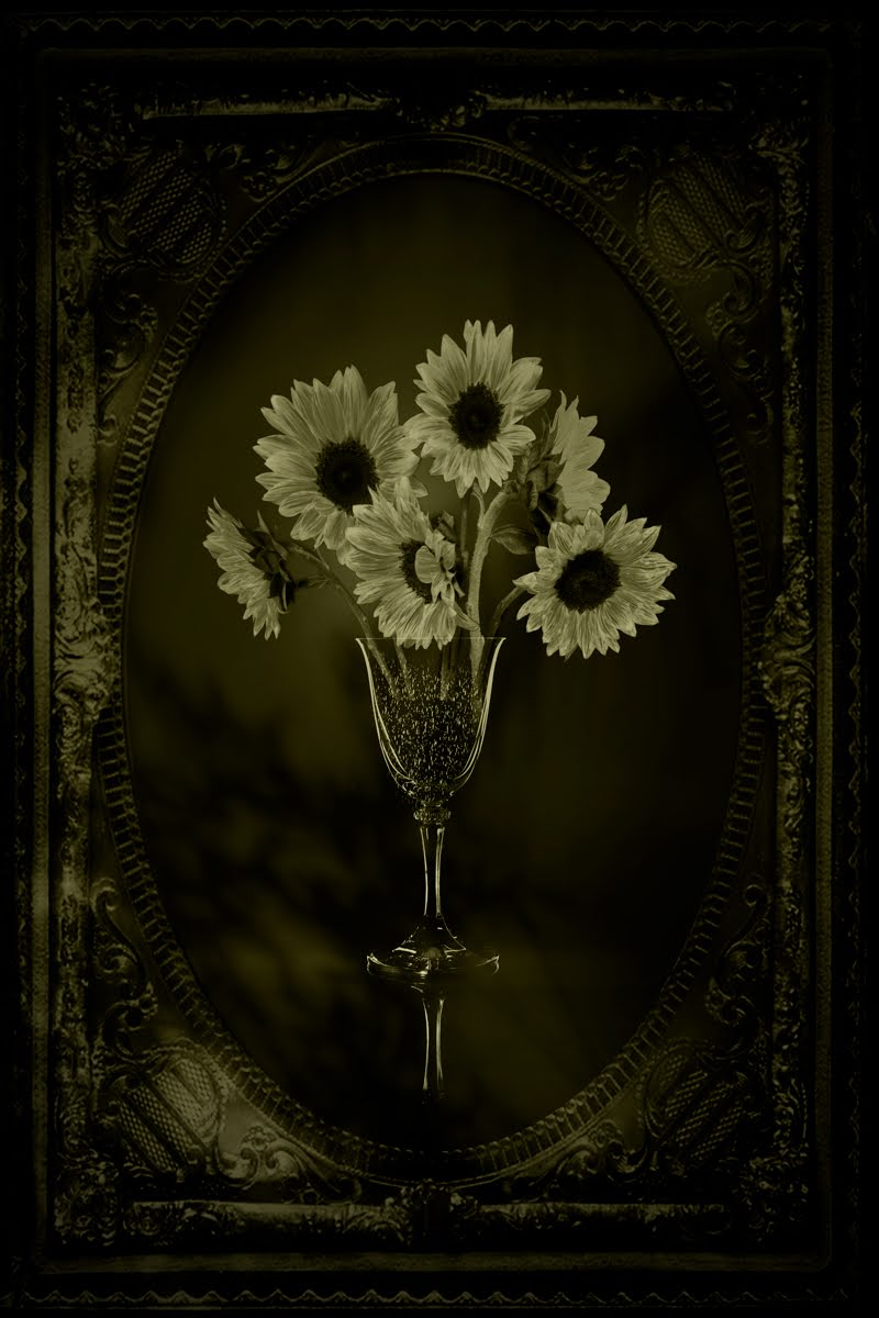 Still Life with Framed Sunflowers © Eduardo Fujii