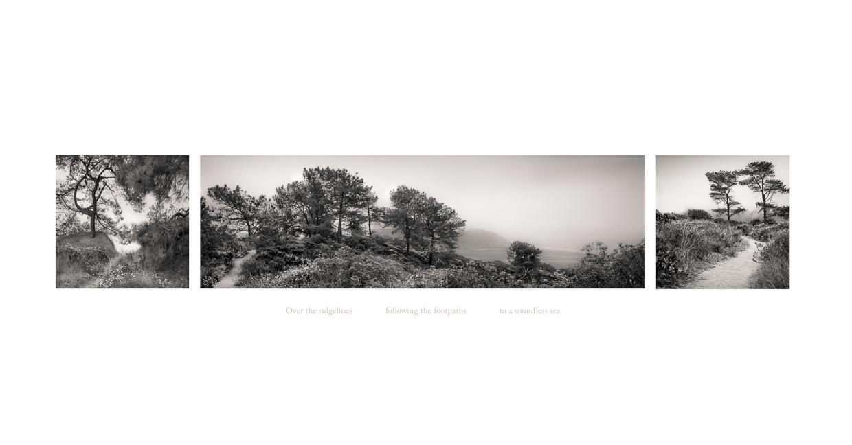 Seeing Silence 5 © Jodi Hulden