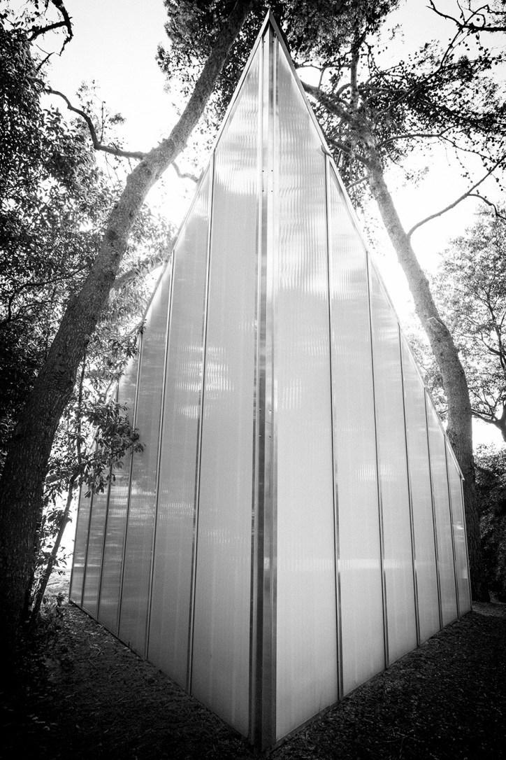 And There Was Light 2 © Danica O.Kus