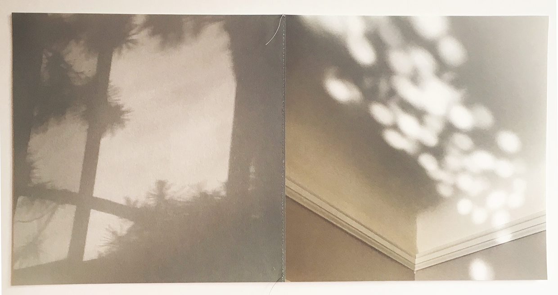 Palm and Magic © Lisa Nebenzahl