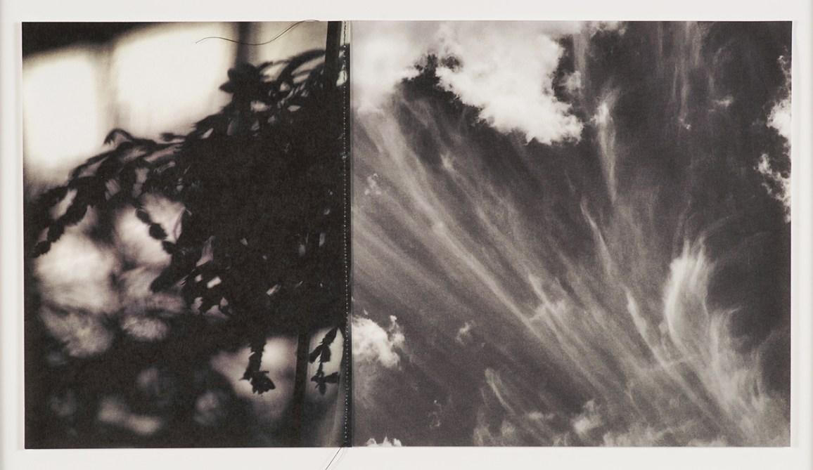 Spill Cloud © Lisa Nebenzahl
