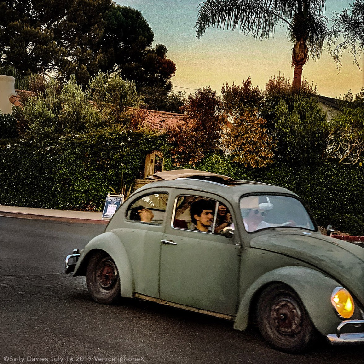Vintage Bug, VW Beetle, 2019 © Sally Davies