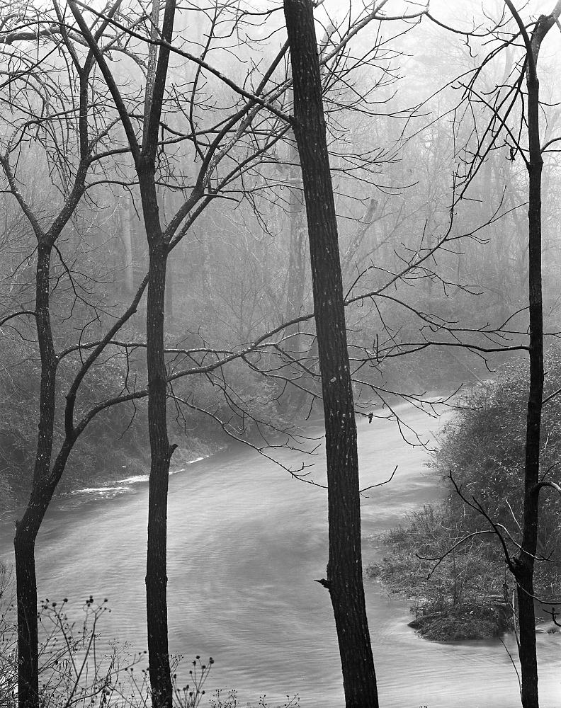 Riverwalk Fog © Holden Richards