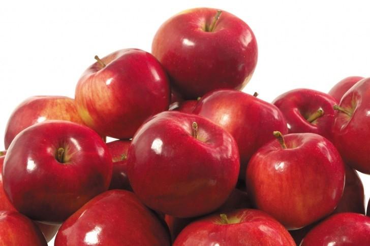 手づくり発酵ジュース教室【りんご 10/16・17】 @ ATTiVAリビングフード・アカデミー | 世田谷区 | 東京都 | 日本