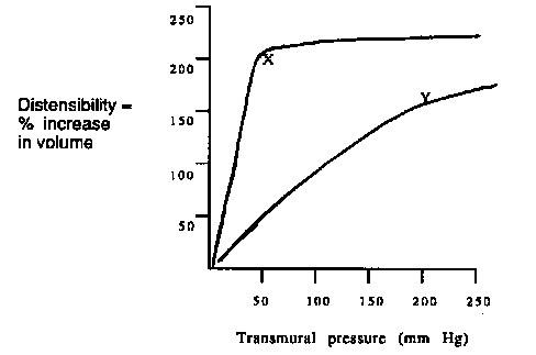 rfumsphysiology / Cardiovascular Problem Set A