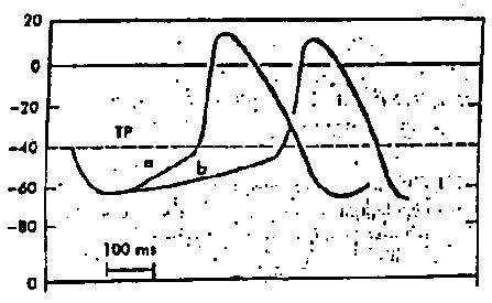 rfumsphysiology / Cardiovascular Problem Set B