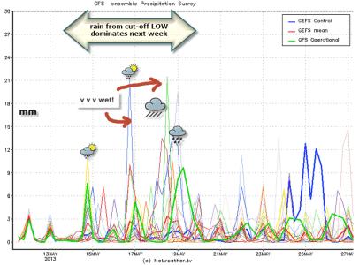 6# convective rainfall peaks