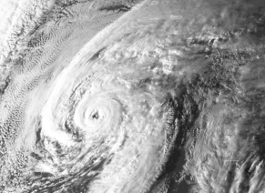 Hurricane Alex close-up