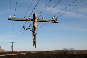 Fire-ravaged utility pole