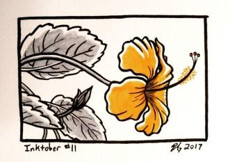 #11 – Hibiscus