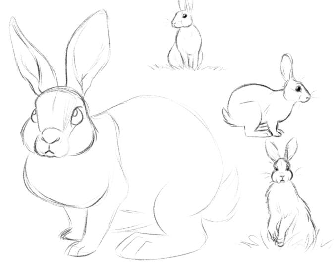 Bunny Sketches, pt. 1