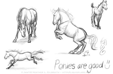 Pony Sketches
