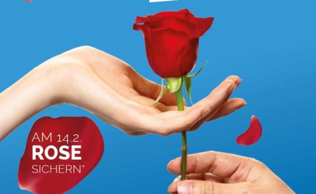 Valentinstag 2020 Mehr Als Nur Liebe Schenken Rhein