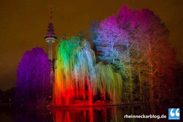 Das Leuchten im Luisenpark  Rheinneckarblog