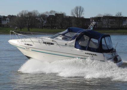 Motorbootausbildung auf dem Rhein - Sealine 300