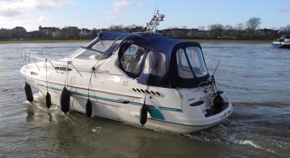 Motoryachttraining auf dem Rhein