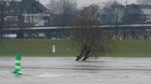 Hochwasser - 8 Km/h Strömung