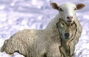 HOW TO RECOGNISE  FALSE TEACHERS/PROPHETS