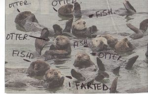 otterfart