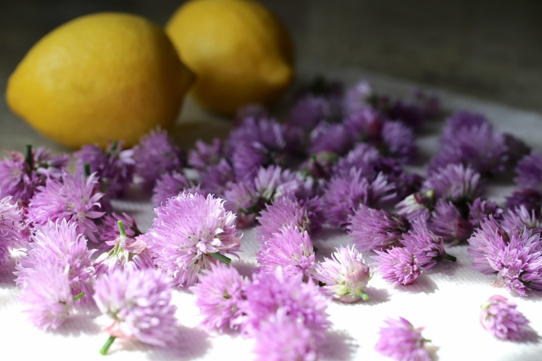 Chive blossoms and lemons