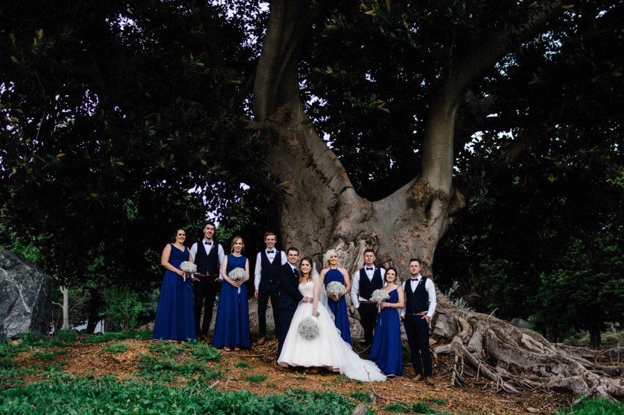 A wedding photo of the bridal party standing together underneath a Moreton Bay Fig Tree.