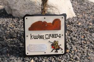 Golf Tournament Plaques -Kissing Camels