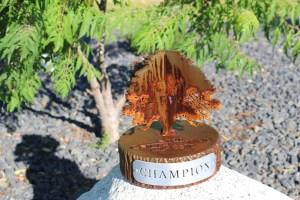 Golf Tournament Trophies -Champions Run