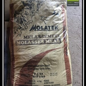 Molasses Meal