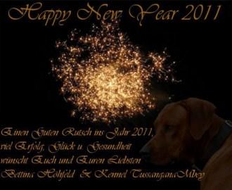 UPdate 01.Januar 2011 :: Frohes Neues Jahr 2011