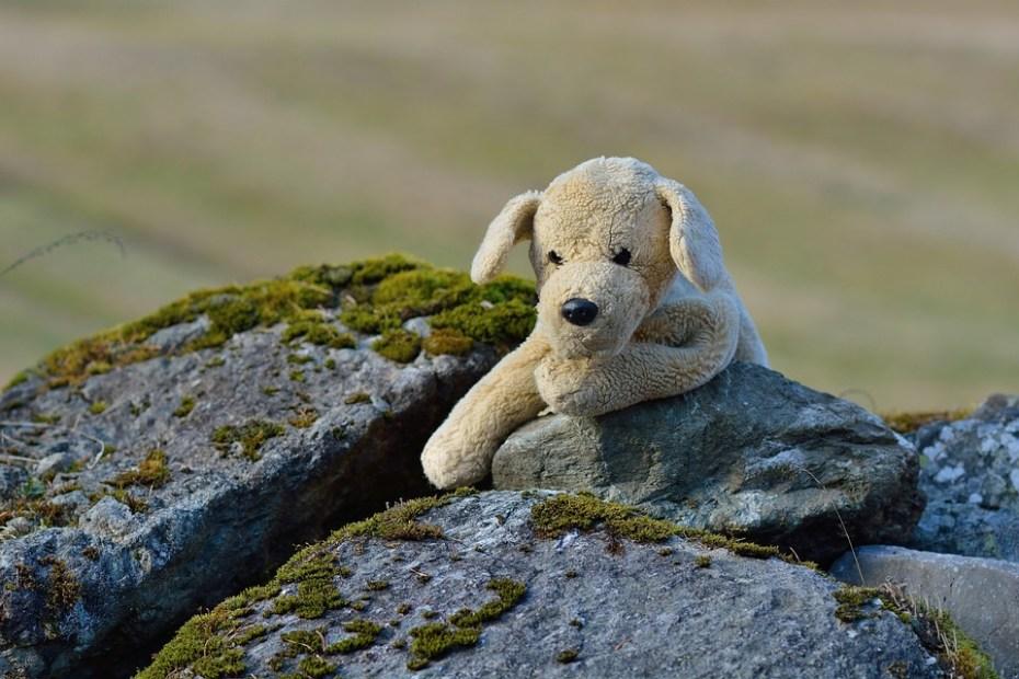 DER IMAGINÄRE HUND, Stoffhund sitzt an einem Stein angelehnt.