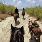 équitation à rhodes
