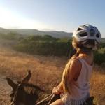 Activité à Rhodes: balade en ânes à rhodes