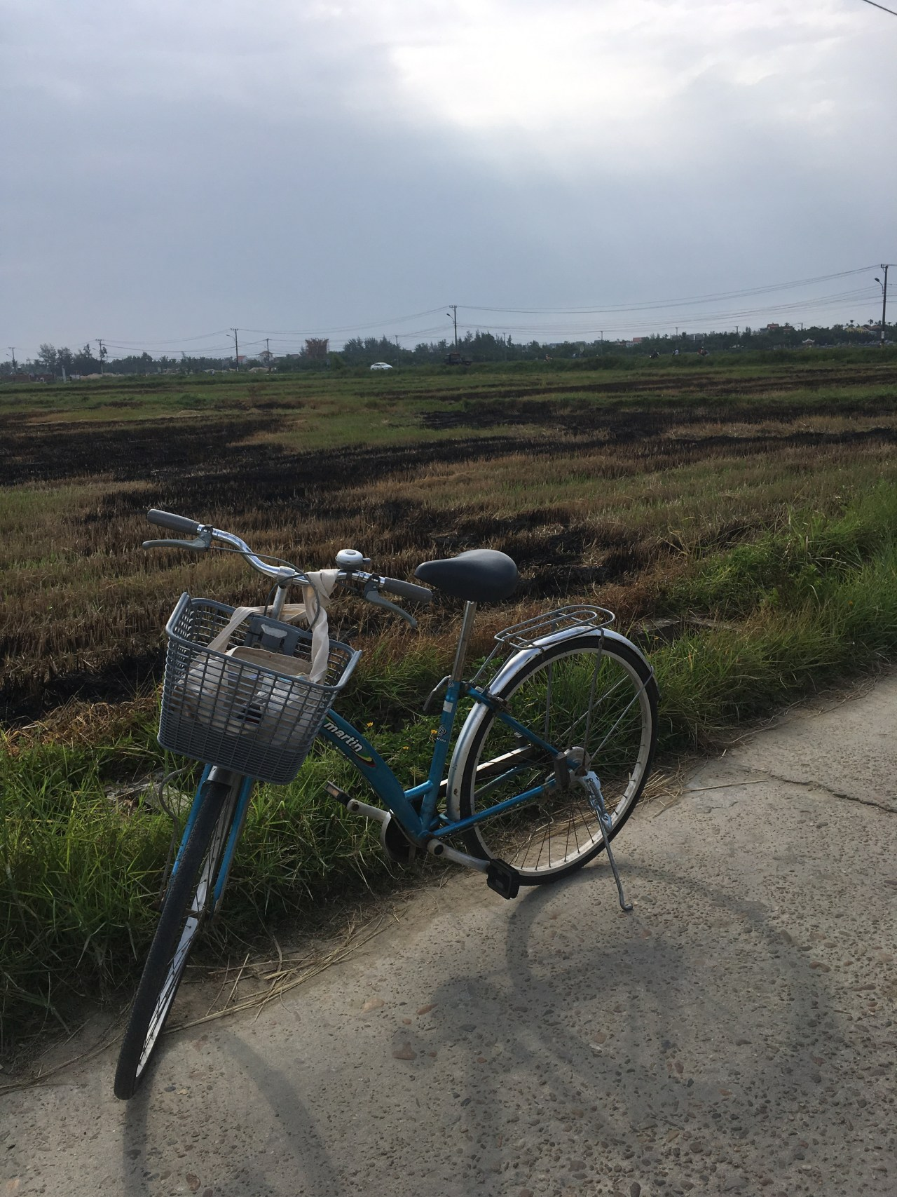 bike rice fields Hoi An