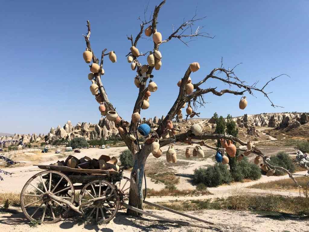 Pottery tree Cappadocia