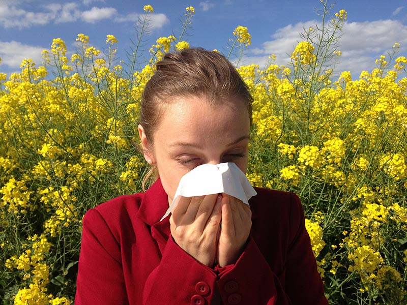 Everything You Need to Know About Reason Of Allergy