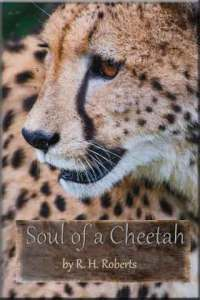 Soul-of-a-Cheetah