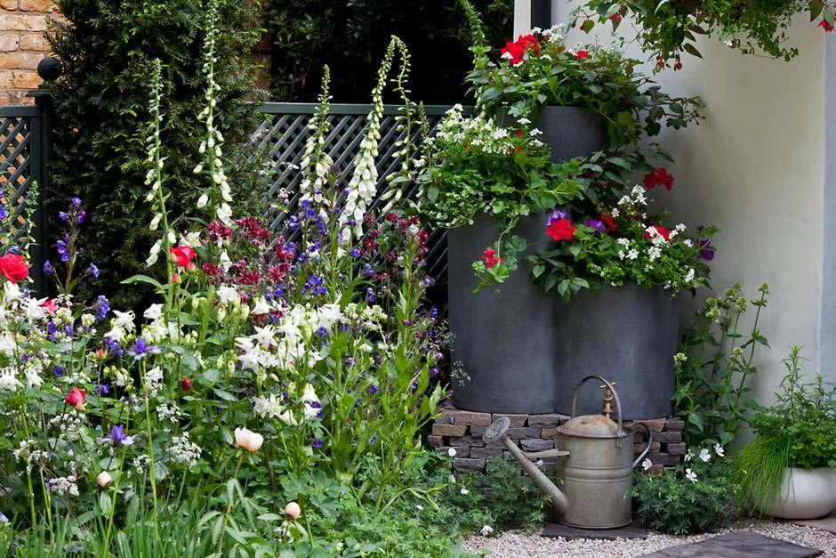 View RHS Garden Design Galleries For Inspiring Ideas / RHS