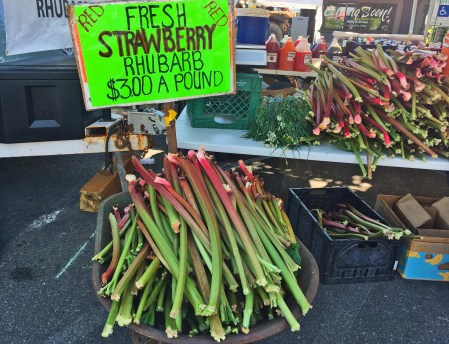 The food court featured lots of options, including fresh stalks of rhubarb. Anyone try one plain?