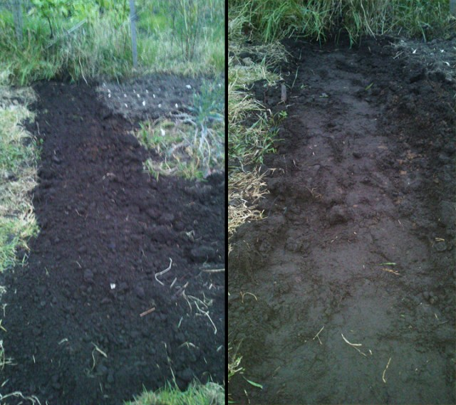 A path, before and after compacting