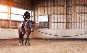 riding longe lesson