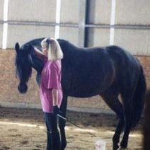 anita kush horse behavior