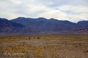 death_valley_019w