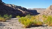 Afton Canyon Mojave Desert
