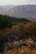 Verdugo Mountains, Burbank, CA