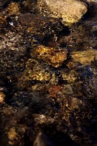 Fish Creek trail stream